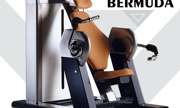 Colección Bermuda-biceps